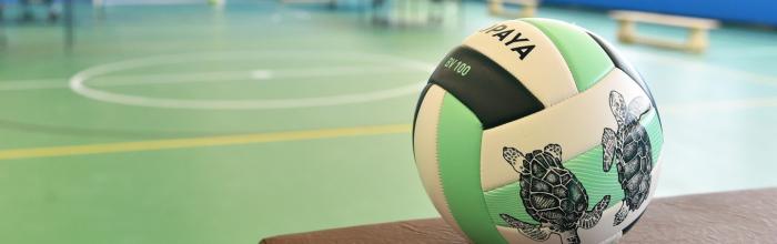 Спортивный комплекс для волейбольной школы «Ника» построят в 2022 году