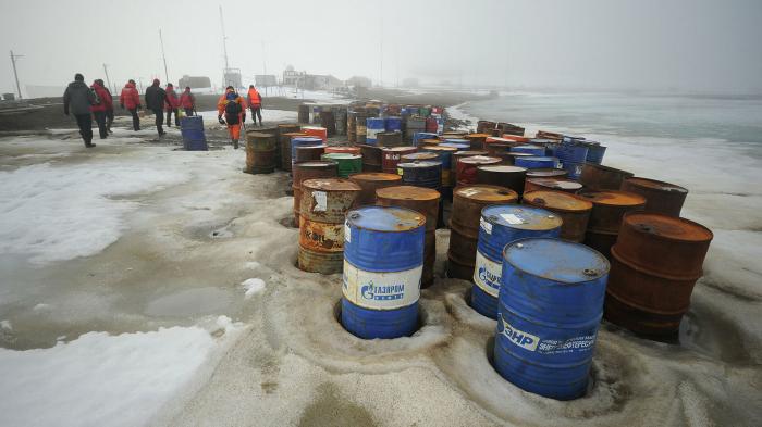 В МИД оценили возможность перехода к низкоуглеродной экономике в Арктике